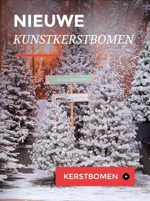 Kerstwereld
