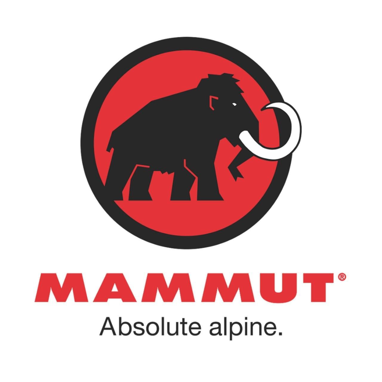 Mammut Base Jump SO Hooded Jacket