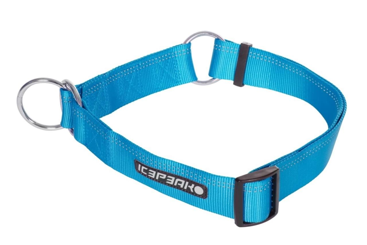 Icepeak Pet Winner Slip Collar Turquoise