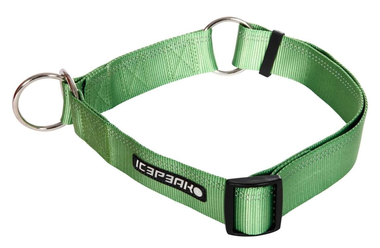 Icepeak Pet Winner Slip Collar Green