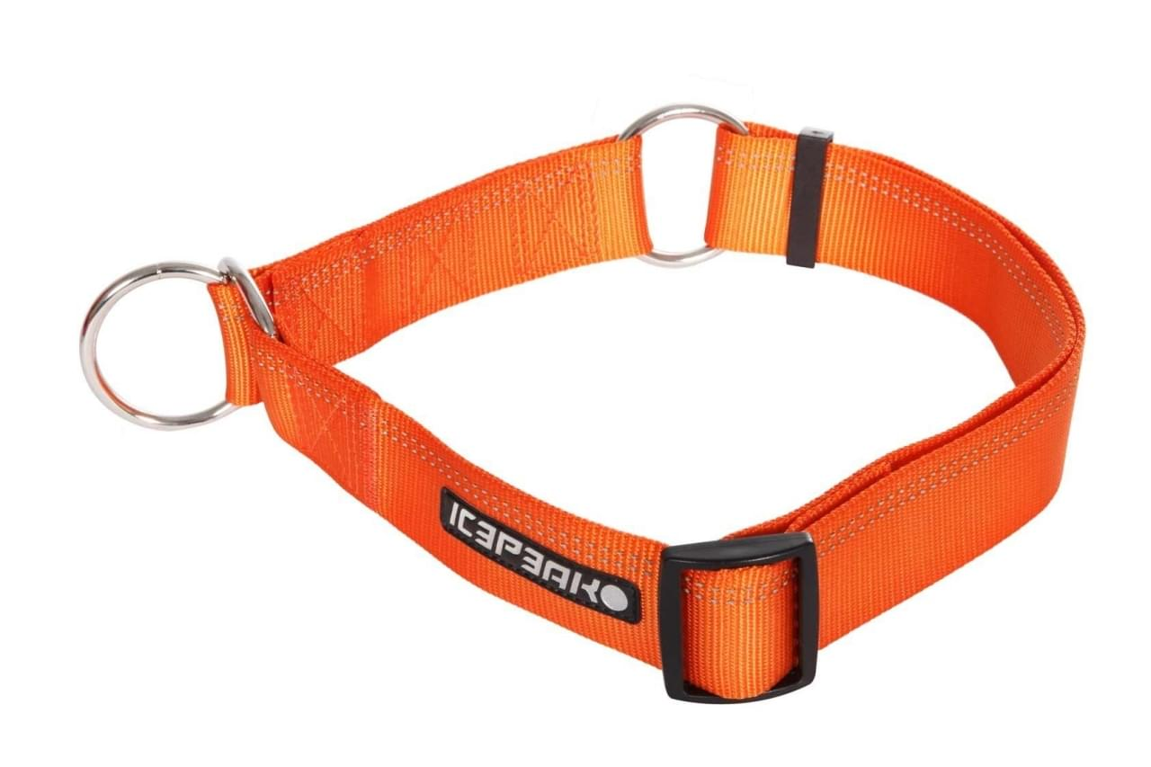 Icepeak Pet Winner Slip Collar Orange