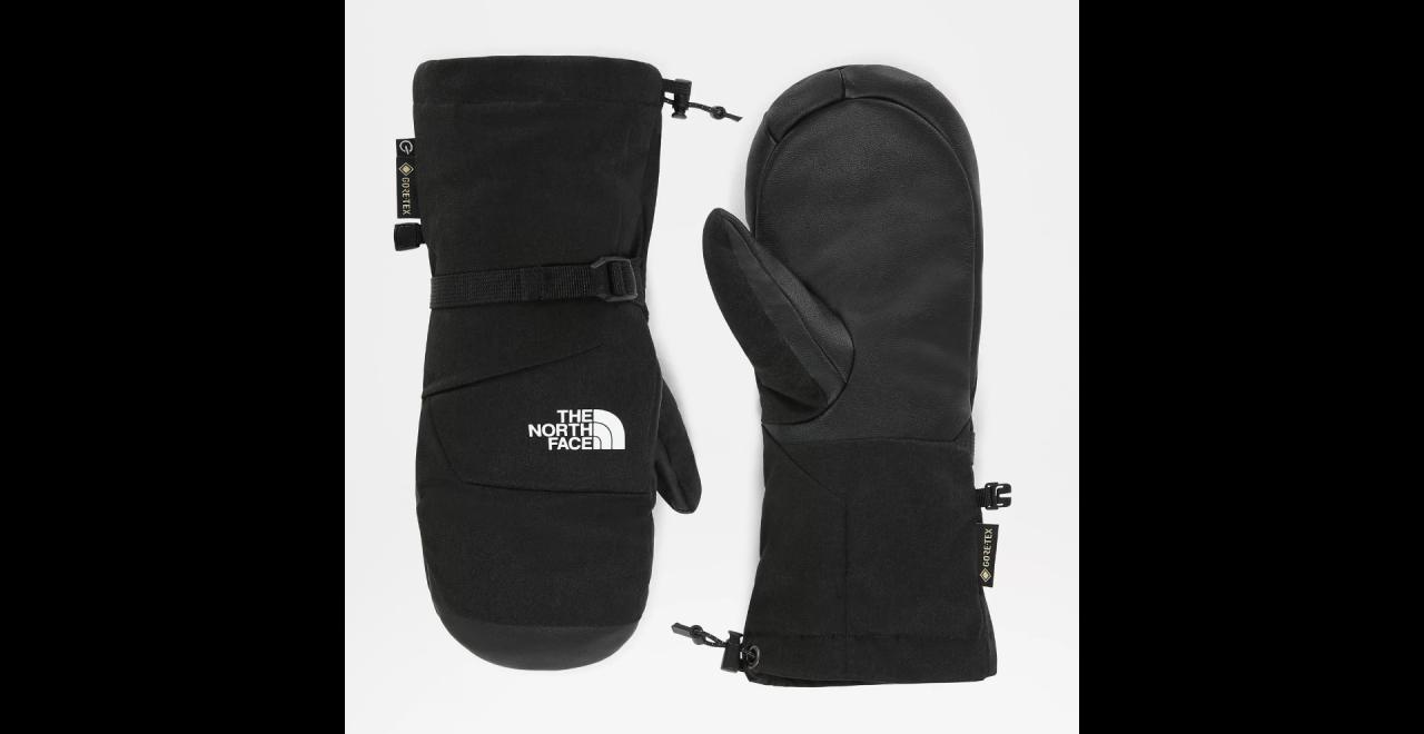 The North Face Montana Etip GTX Handschoenen Dames