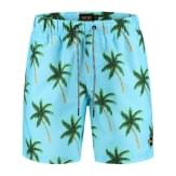 SHIWI Men Swimshort Painted Palms Heren